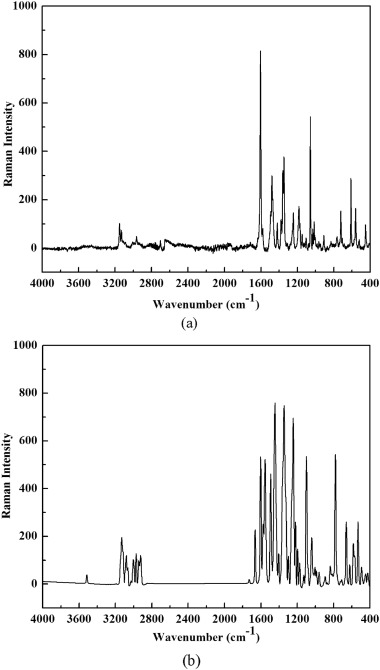 Investigations of vibrational spectra and bioactivity of