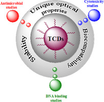 Antimicrobial activity, cytotoxicity and DNA binding studies