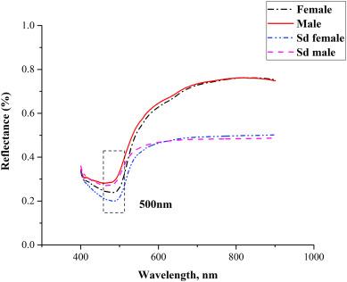 Sex determination of silkworm pupae using VIS-NIR