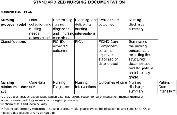 Evaluation of electronic nursing documentationnursing process model summary of standardized nursing documentation model adapted from 38 thecheapjerseys
