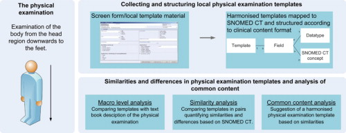 content analysis of physical examination templates in electronic