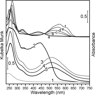 Sorption Of Red Dyes On Palygorskite Synthesis And Stability Of Red