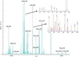 peranan positif nemathelminthes anti parazita kezelés a helminták