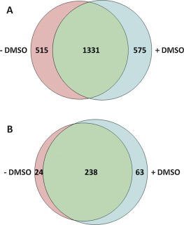 Evaluation of dimethyl sulfoxide (DMSO) as a mobile phase additive