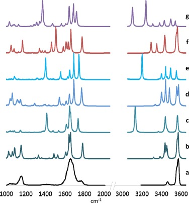 Infrared multiple photon dissociation spectroscopy of