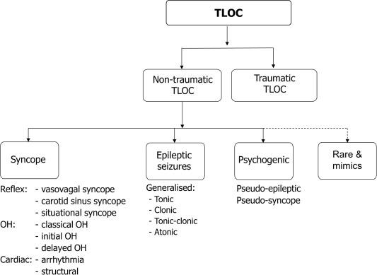 Tilt table testing in neurology and clinical neurophysiology