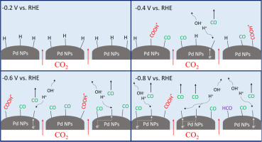 zniżki z fabryki ponadczasowy design nowy wygląd Electrochemical behavior of CO2 reduction on palladium ...