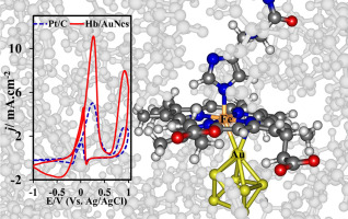 Efficient ethanol oxidation by hemoglobin-capped gold