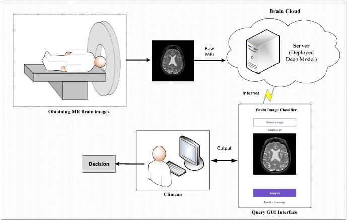 Application of deep transfer learning for automated brain