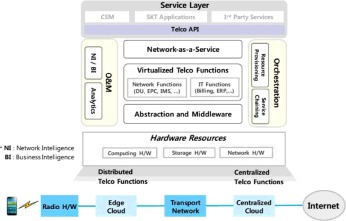 Wireless software-defined networks (W-SDNs) and network function