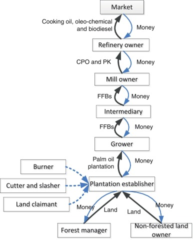 Reducing forest and land fires through good palm oil value chain fig 3 ccuart Image collections