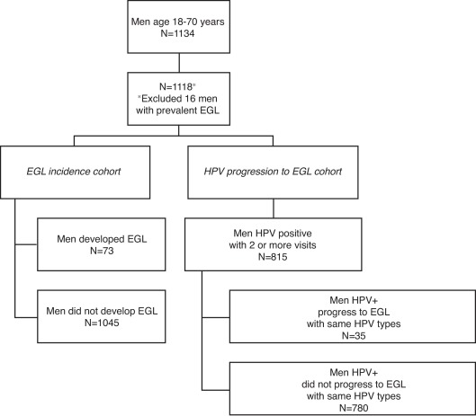 HPV-related external genital lesions among men residing in