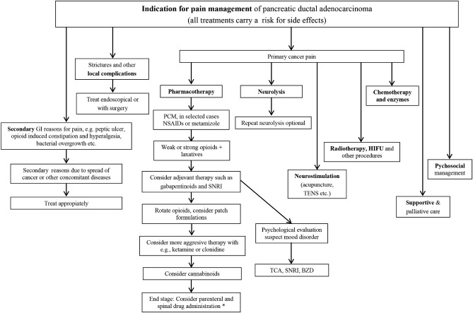 Pain in pancreatic ductal adenocarcinoma: A multidisciplinary
