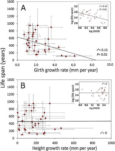 Ageing in trees: Role of body size optimization in