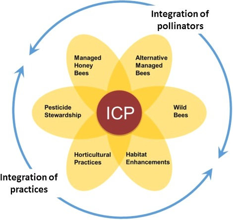 Integrated crop pollination combining strategies to ensure stable integrated crop pollination freerunsca Gallery
