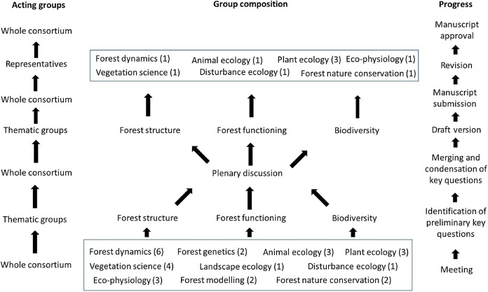 forest ecology research paper topics