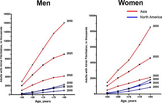 Epidemiology of Atrial Fibrillation: The Australian and Asia