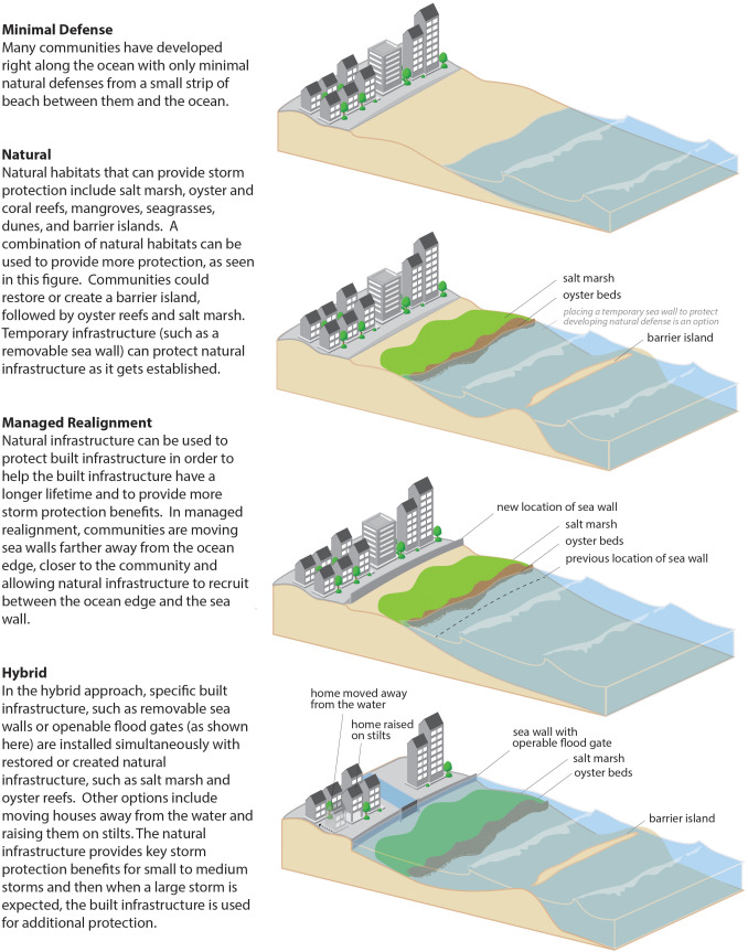 Future of our coasts: The potential for natural and hybrid