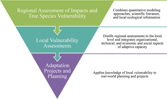 A framework for adapting urban forests to climate change