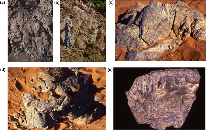 relative and absolute dating to determine the age of stratified rocks