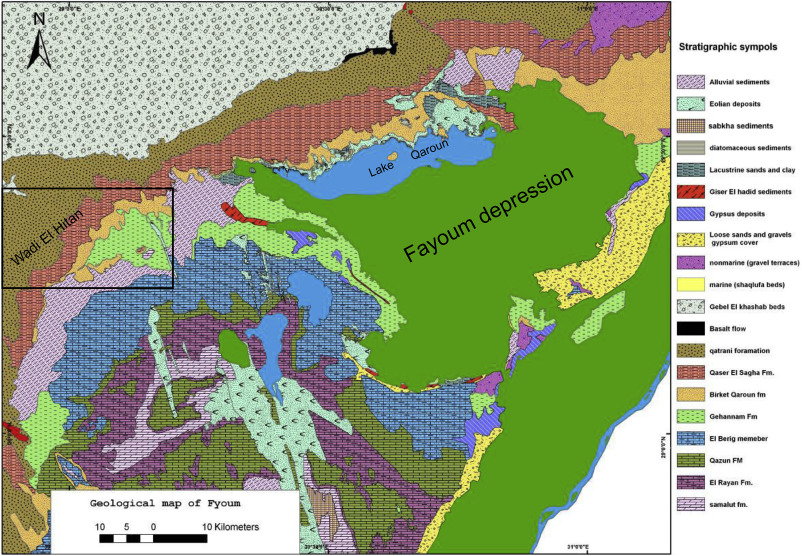 Lithofacies And Biofacies Characteristics And Whales Skeletons - Map of fayoum egypt