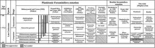 Foraminiferal biostratigraphy dating