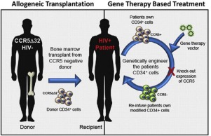 CCR5-edited gene therapies for HIV cure: Closing the door to
