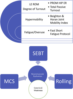 Intrinsic modifiable risk factors in ballet dancers: Applying