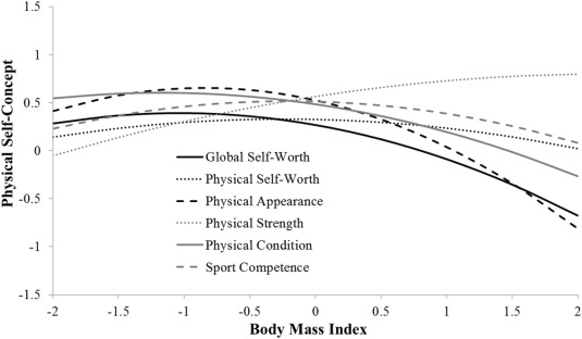 English Validation Of The Short Form Of The Physical Self