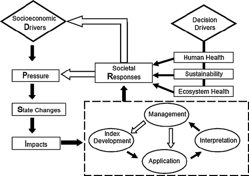 Assessing the environmental quality status in estuarine and
