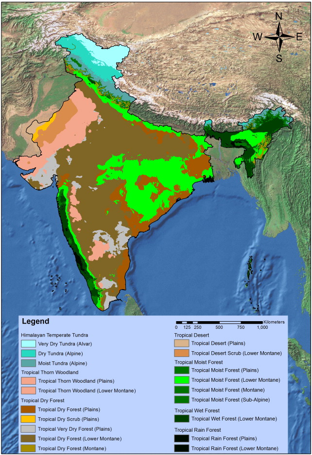 Assessing biome boundary shifts under climate change scenarios in the biome and sub biome life zone distribution in india gumiabroncs Images