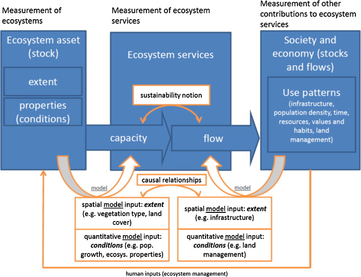 Accounting for capacity and flow of ecosystem services: A