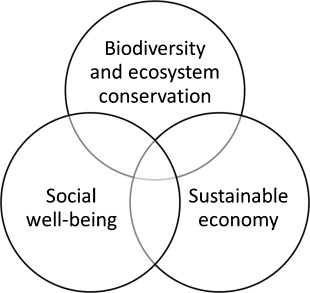 How to value biodiversity in environmental management