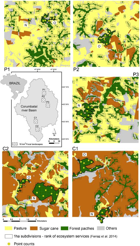 Bird sensitivity to disturbance as an indicator of forest