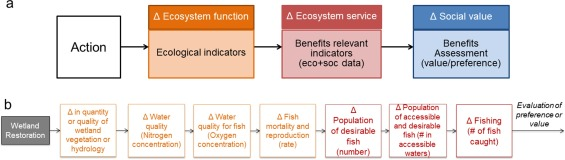 Benefit relevant indicators: Ecosystem services measures