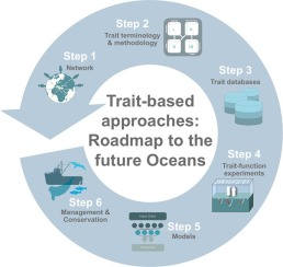 Trait-based approaches in rapidly changing ecosystems: A roadmap to