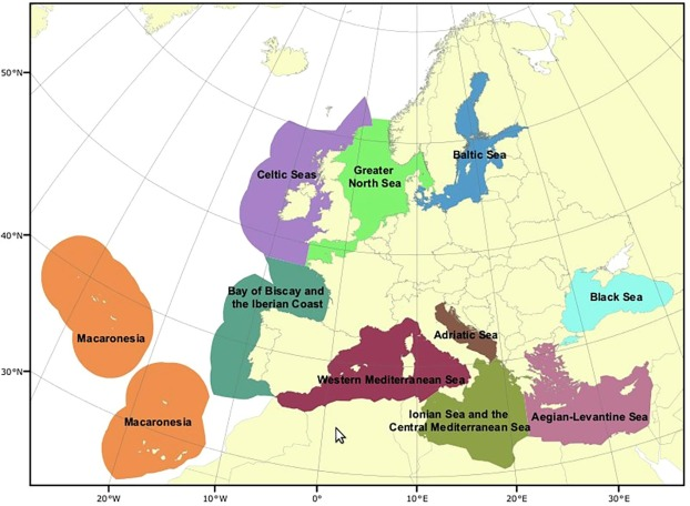 Pelagic habitats in the Mediterranean Sea: A review of Good