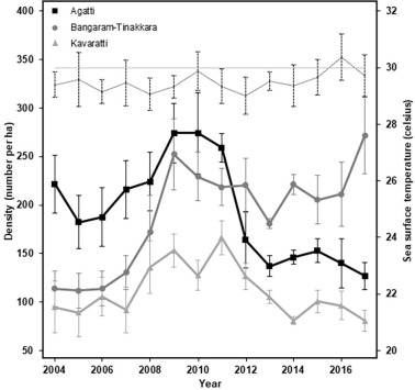 Impact of sea surface temperature anomalies on giant clam