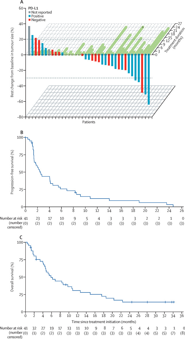 Ramucirumab plus pembrolizumab in patients with previously