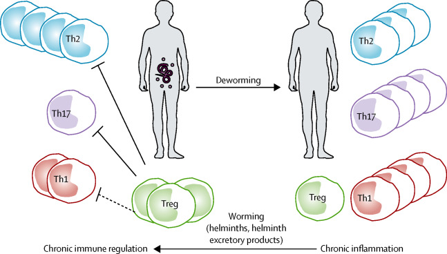 helminthic therapy celiac disease)