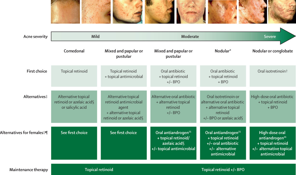 Systematic Review Of Antibiotic Resistance In Acne An Increasing Topical And Oral Threat Sciencedirect