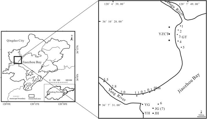 Characterization Of Soil Salinization In Typical Estuarine Area Of - Jiaozhou city map