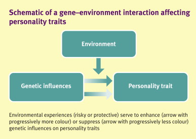 Gene Environment Interaction >> Gene Environment Interactions And Their Impact On The