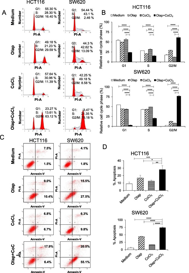 Dual Inhibition Of Vegf And Parp Suppresses Kras Mutant Colorectal Cancer Sciencedirect