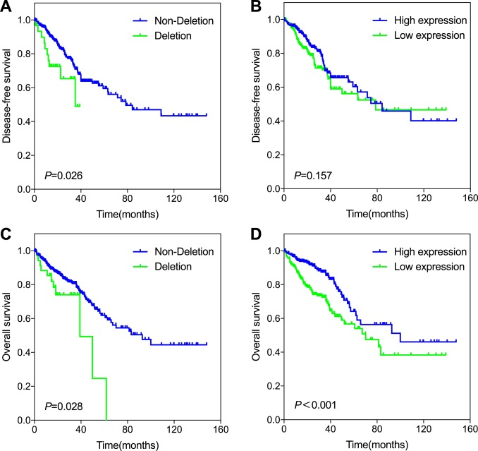 Palb2 As A Potential Prognostic Biomarker For Colorectal Cancer Sciencedirect