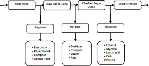 Assessment of sugarcane industry: Suitability for production