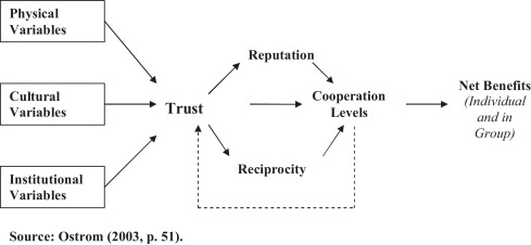 Trust as an element of informal coordination and its
