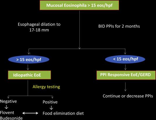 Eosinophilic esophagitis and budesonide
