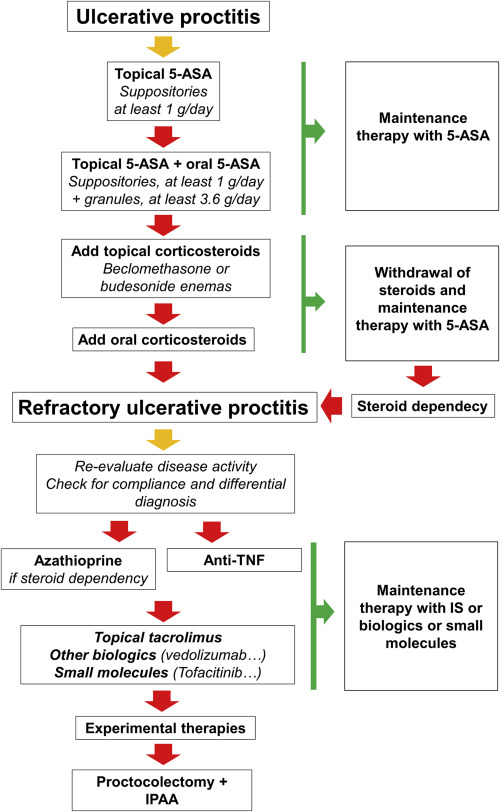 Refractory ulcerative proctitis: How to treat it