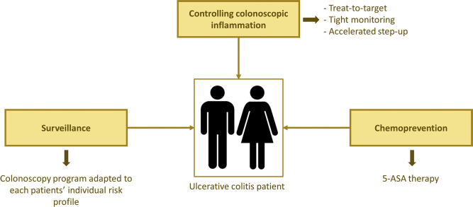 Colorectal Cancer Prevention In Patients With Ulcerative Colitis Sciencedirect